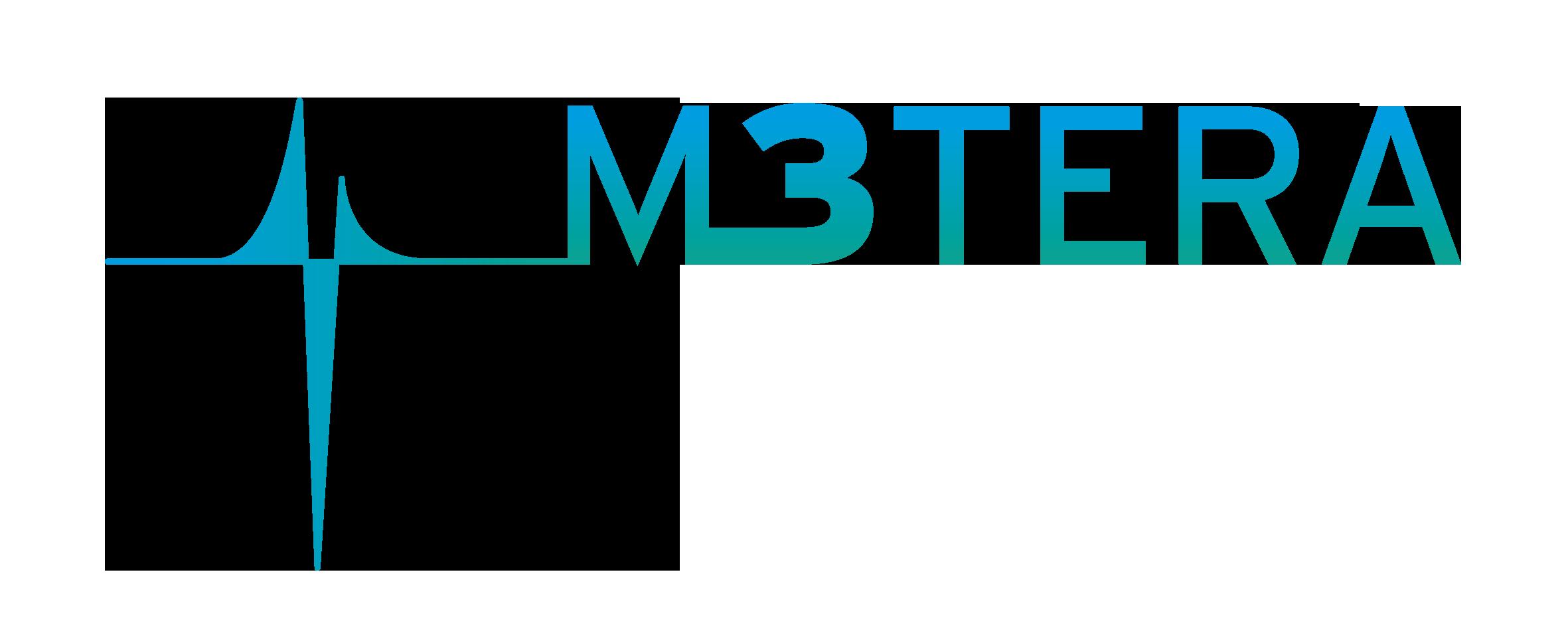 Project Logo M3TERA